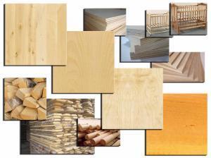 Породы древесины. Берёза. Текстура и изделия.