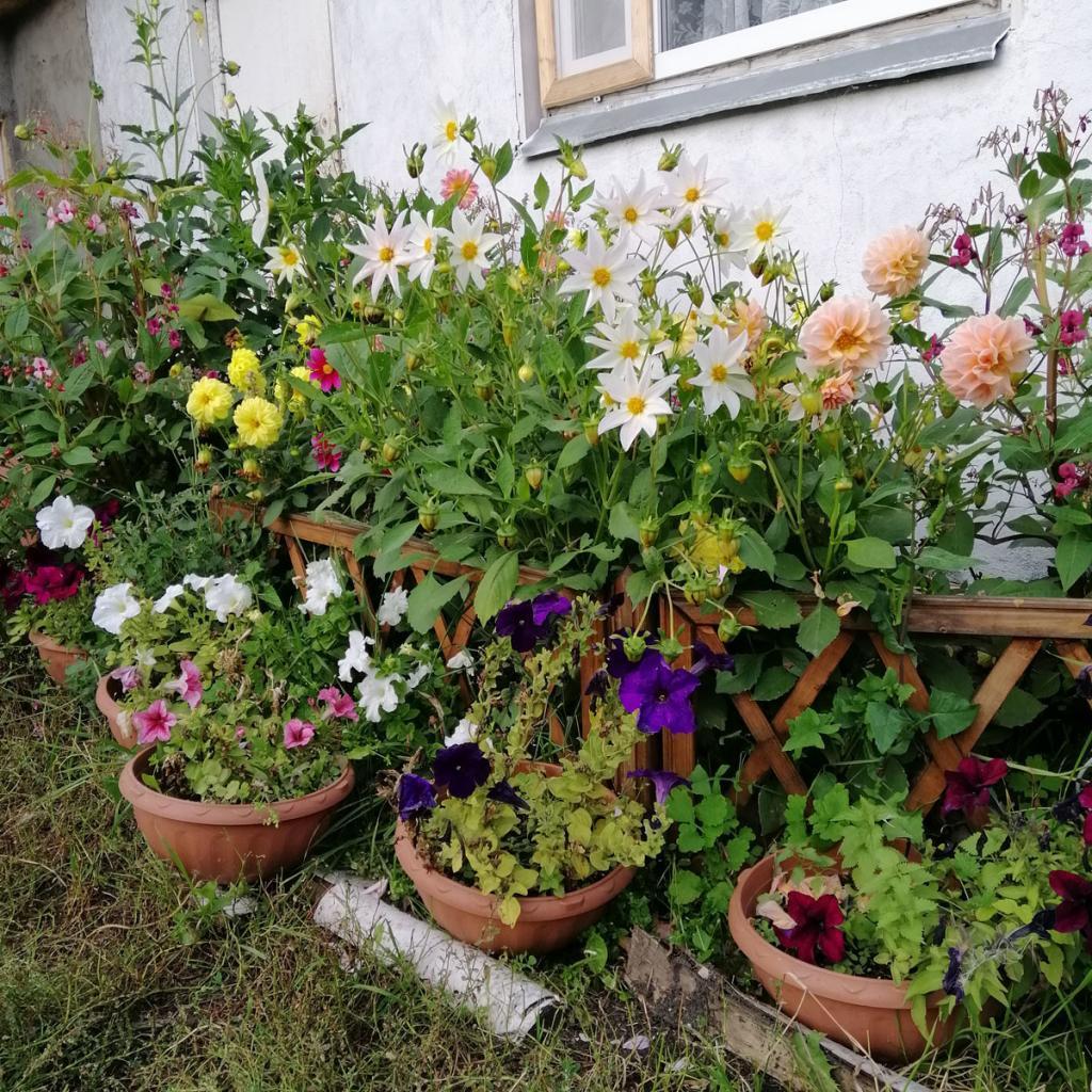 Заборчик для цветника (2)