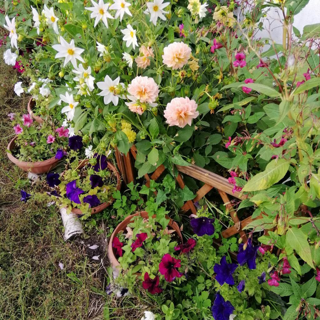 Заборчик для цветника (1)