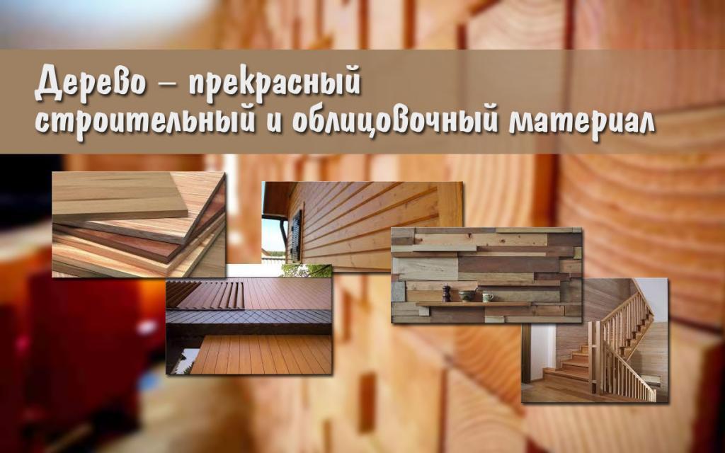 Дерево – прекрасный строительный и облицовочный материал