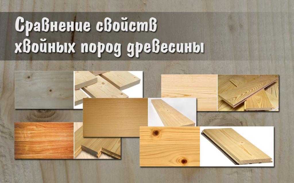 Сравнение свойств хвойных пород древесины
